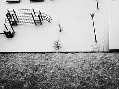 . (Elina-Doll) Tags: schnee winter urban petersburg sankt weis