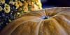 Pumpkin Eclipse (zuni48) Tags: autumn orange macro fall pumpkin bokeh mums flowersandplants jonesboroughtennessee pinnaclephotography flickrstruereflection1 infinitexposure zunikoff