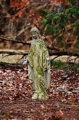 1251 the virgin known as Mary (Violentz) Tags: statue catholic god madonna mary religion jesus mother stjoseph galilee icon holy virgin jew bible christianity bethlehem virginmary blessed babyjesus nazareth motherofgod ourladyofguadalupe ourlady blessedmother holymother hailmary ourladyoflourdes israelite ourladyofgrace ourladyoffatima lawnstatue thevirginknownasmary thetheotokos handmaidenofthelord heymarywatchagonnanamethatprettylittlebaby miriammotherofisa