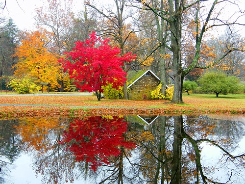 Seasons Reflections