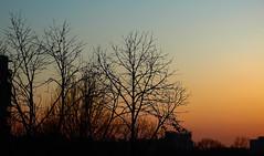 sunset (na.harii ) Tags: sunset sky colors beautiful contrast canon photography eos 50mm photo cityscape dslr capture bucharest nationalgeographic carlzeiss czj carlzeissjena 600d pancolar naturewatcher