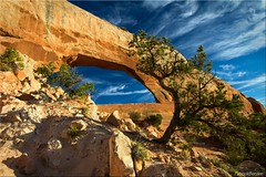 Wilson's arch [Explored] (Patrick Berden) Tags: usa utah moab 2013 wilsonsarch
