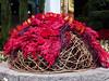2014 Flower Show 027 (Adam Cooperstein) Tags: philadelphia pennsylvania flowershow philadelphiaflowershow philadelphiapennsylvania commonwealthpa 2014philadelphiaflowershow