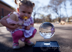 Gazing into the Crystal Ball (Design by Nicola) Tags: road pink trees sky white tree girl ball globe child purple teddy crystal driveway sphere round curious pigtails dummy studying pacifier crystalball curiousity soother paci investigating vision:mountain=0568 vision:sunset=0517 vision:sky=0847 vision:outdoor=0851