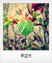 "#DailyPolaroid of  25-4-14 #209 • <a style=""font-size:0.8em;"" href=""http://www.flickr.com/photos/47939785@N05/13927772739/"" target=""_blank"">View on Flickr</a>"