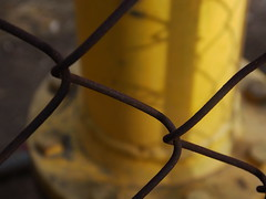 Blurry yellow ( ) Tags: pipe
