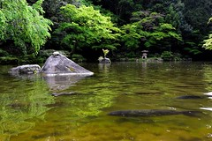 "Nikon 1 V3 test (Matthias Harbers) Tags: park test history japan photoshop temple 1 nikon buddhism historic v3 chiba dxo nikkor narita naritasan library"" shinshoji ""nikon temple"" 1"" ""photoshop ""topaz elements"" labs"" naritasanpark ""sutra 6713mm ""shinshoji v3"""