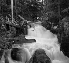 Sea to Sky Trail. (P.A.B.) Tags: trees blackandwhite canada water whistler flow waterfall britishcolumbia logs stitched coastmountains pacificranges nikond800e nikonnikkor2470mmf28afsged