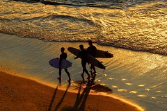 three surfers at th