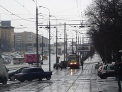 (luchiki1) Tags: road street city people dog house building bus girl car night train river town labrador metro russia moscow taxi capital tram avenue russian federation          finik           luchiki1