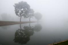 Disappearing into the fog (fenicephoto) Tags: arizona fog scottsdale