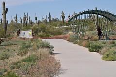 Skip Rimsza Paseo 3 (HockeyholicAZ) Tags: arizona cactus phoenix architecture hiking trails sidewalk saguaro mountainbiking sonorandesert wheelchairaccessible carnegieagigantea environmentalimpact desertvista sonoranpreserve apachewashtrailhead adafriendly skiprimszapaseo