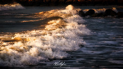 Onda dorata (Callegher Marco - The beauty in my eyes) Tags: venice sea seascape verde beach sunrise canon lights rocks mare waves alba wave duna venezia spiaggia luce adriatic onde onda scogli mattino caorle
