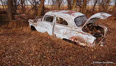 Loaded Two-Ten (/ shadows and light) Tags: old sunset cars abandoned vintage countryside gm sundown dusk manitoba vehicles baretrees automobiles beaters generalmotors clunkers rustbuckets chevrolettwoten 1953chevy210 nearpurves