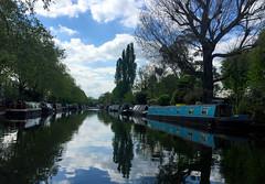 136/366/2016: Little Venice (Mrs Daisy) Tags: reflections boat canal houseboat paddington littlevenice grandunioncanal hpad hpad16