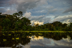 Amazonia. Evening Colors (khandozhkoa) Tags: travel peru nature reflections river landscape evening sony wideangle worldwide amateurs amazonia rx100 landscapesdreams