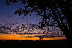 Early Sunday Morning Peace (thefisch1) Tags: morning sunset sky cloud tree leaves sunrise lens early leaf interesting nikon hills vista kansas prairie nikkor flint oogle subdued 1424