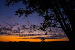 Early Sunday Morning Peace (thefisch1) Tags: morning sunset sky cloud tree leaves sunrise lens early leaf interesting nikon hills vista kansas prairie nikkor flint oogle subdued 1424