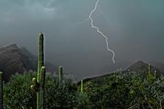 Rain At Last (Dawnsview) Tags: light arizona cactus storm mountains rain dark landscape desert pentax monsoon lightning saguaro lightningbolt sahuaro darkclouds sabinocanyon