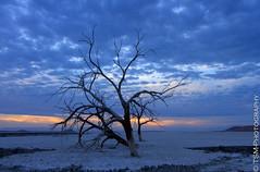 _IGP2576_77_78_79_80 (blackcloudbrew) Tags: sunset riverside redhill saltonsea samsung1224 pentaxk5