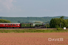 8th June 2016. The Cambrian Express with 60103 Flying Scotsman. (Dangerous44) Tags: coast flying engine cathedrals steam locomotive express scotsman cambrian 60103