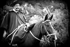 Otoniel Cardoso (Eduardo Amorim) Tags: brazil horses horse southamerica brasil criollo caballo cheval caballos cavalos pferde cavalli cavallo cavalo gauchos pferd riograndedosul pampa hest hevonen campanha brsil chevaux gaucho  amricadosul fronteira hst gacho  amriquedusud  gachos  sudamrica suramrica amricadelsur  sdamerika crioulo caballoscriollos criollos   americadelsud dompedrito  crioulos cavalocrioulo americameridionale caballocriollo eduardoamorim cavaloscrioulos