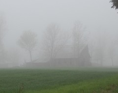 Fog tries to hide the old barn and trees. (Gerald Barnett) Tags: trees usa mist green art nature beautiful beauty weather misty fog barn rural landscape outdoors grey countryside illinois nikon mood quiet nebel artistic availablelight farm rustic gray barns foggy tranquility atmosphere naturallight oldbuildings calm awsome oldbarns mysterious mystical inspirational nebbia contemplative niebla brouillard tranquil oldbuilding mystic oldbarn artphoto naturalcolors ruralamerica southernillinois artpic farmscene naturalcolor rurallandscape foggylandscape treesinmist spiritoftheland landscapeinfog ruralpic