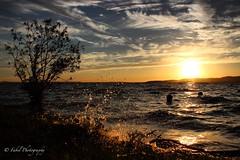 Drops Sunset. (fabriziobelia) Tags: sunset sun lake nature canon lago drops italia tramonto lanscape paesaggio lovenature trasimeno