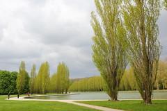IMG_4543 (Irina Souiki) Tags: parcdesceaux france paris sceaux flowers nature parc park