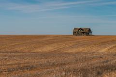 Matchstick House (Pedalhead'71) Tags: house abandoned landscape washington homestead adamscounty wheatfield