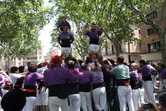 IMG_4597 (Colla Castellera de Figueres) Tags: de towers human sant pere castellers figueres pla pilars olot 2016 colla castells lestany xerrics actuacio gavarres castellera 2p5 7d7 5d7 3d7a esperxats picapolls