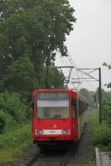 Cologne - Bonn (Stadtbahn) (Jean (tarkastad)) Tags: germany deutschland tram lightrail streetcar allemagne tramway lrt tarkastad stadtbahn strasenbahn