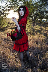 Through the Woods (JoDi War) Tags: trees sunset red wild nature grass fairytale dark lost blood woods wolf dress boots lace gothic victorian velvet hood storybook rhyme grandmothershouse nurseryrhyme throughthewoods storytale