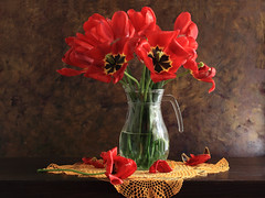 This Is Special (panga_ua) Tags: light red stilllife art water colors beauty composition canon spectacular lights artwork acrylic darkness tulips artistic availablelight memories deep ukraine poetic creation imagination natalie reds chiaroscuro arrangement tabletop bodegon naturemorte redtulips panga artisticphotography rivne naturamorta artphotography redpetals richcolors sharpfocus glassjug fragrantflowers greenstems paintedbackground thisisspecial colordoily  nataliepanga memorybuilders
