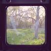 May2013-1759-Edit (Roxanne Elise) Tags: argus ttv throughtheviewfinder ttvf