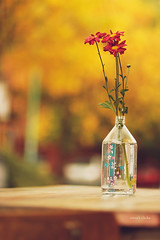 Have a great weekend! (nina's clicks) Tags: wood flowers 3 glass table golden three bokeh paintedglass threeflowers