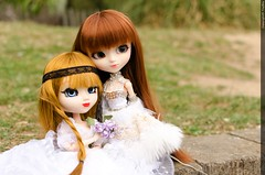 A new friend (ToyBox_83) Tags: full pullip custom nol pre barasuishou