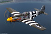 "P-51B ""Impatient Virgin"" Mustang (xnir) Tags: seattle field north virgin american impatient mustang everett paine nir p51 naa p51b xnir impatientvirgin"