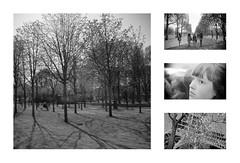 (bvanm) Tags: friends portrait paris tree tower four friend tour walk eiffel row parijs thisisme