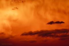 Pinceles (Albertina Fotografia) Tags: travel viaje flowers blue light red sky orange patagonia naturaleza white mountain lake color tree verde green love byn luz sol nature water argentina rio yellow azul night landscape arbol lago atardecer fire noche landscapes rojo agua amor luna amanecer amarillo cerro bosque cielo nubes sur laguna fuego montaa naranja sombras nube vuelo vegetacion ramas tranquilidad raices