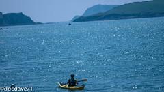 Irishsummer (docdave71) Tags: pictures ireland sea summer dog sun kayak cork fotos gambar bilder billeder الصور clonakilty immagini kuvat εικόνεσ