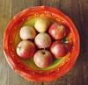 the Magnificent 7 ~ a Gala Performance:)) (A4ANGHARAD) Tags: fruit fuji fujifinepix a4angharad macevans sl240