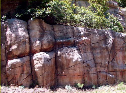 Rock Wall, Oak Creek Canyon, AZ 7-30-13c
