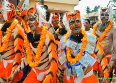Tiger Dance (Huli Vesha) Taken at Udupi Krishna Temple (Ganesh @bantakal.com) Tags: india lens dance nikon asia hare god indian tiger sri pindi spiritual krishna karnataka hindu v1 rama shri huli govinda vesha janmashtami aasta vitla 1030mm bantakalcom