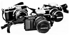 EPL-5, EPL3, EPL1. Pen. Olympus. (CWhatPhotos) Tags: epl1 epl3 epl5 together pen olympus penn elp1 1442mm kit esystem four thirds digital camera cwhatphotos mzuiko zuiko lens pictures picture photo photos image images foto fotos that have which contain taken monochrome olympuspen retro black white blackandwhite blackwhite photography monochromed micro 43 flickr