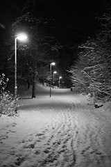 Snowy Stroll (Alexander Endi Wirawan) Tags: winter snow monochrome night lights blackwhite europe sweden stockholm streetphotography nordic scandinavia hallunda