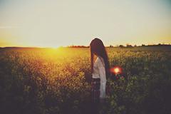 Canola Fields (Amanda Mabel) Tags: light sunset sky sun selfportrait yellow lace faceless wildflowers plaid yass wheatfield tartanskirt canolafield portraitphotography boorowa sunsey backlitphotography amandamabel amandamabelphotography canolafieldnsw