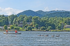Lake Junaluska, NC (Pictimilitude) Tags: trees summer water ducks canoe lakeview summersky canoeingthelake