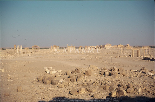 Palmyra - General View South