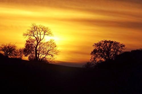 Sunset 10th November 2013